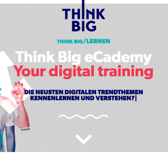 Think Big eCademy